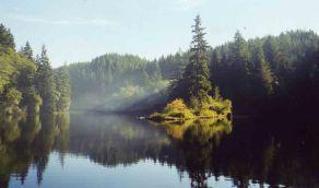 27 Aug 1999 Sylvia Lake State Park morning mist