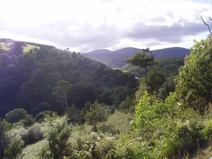 View from Berriedale