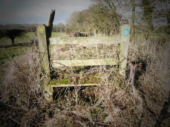 This stile was mentioned in the Guide Book!