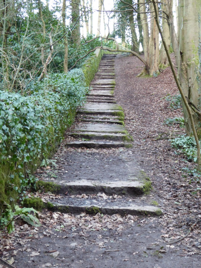 Steps to Abbots Leigh